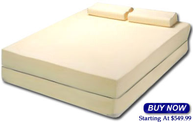 Purchase a Visco Mattress!